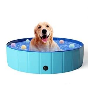 piscina per cani a sconto