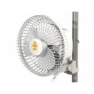 offerta ventilatore grow box